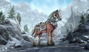Ездовое животное — осадный боевой конь