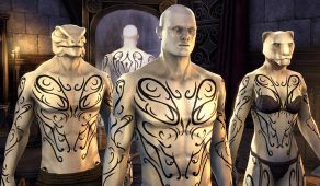 Bards College Skald Body Marks | Нательная раскраска скальда Коллегии бардов