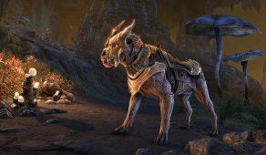 Cursebound Wolf | Связанный проклятием волк