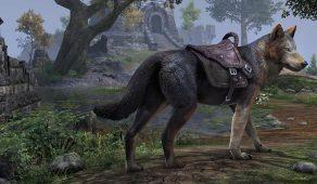 Glenumbra Border Wolf | Приграничный гленумбрийский волк