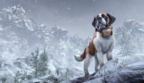Anthorbred Avalanche Dog | Анторская лавинная собака