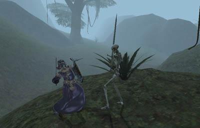 Одинокий обитатель туманного острова, на фоне унылых пейзажей
