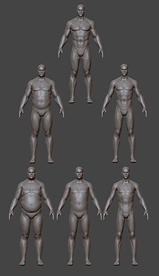 Male physique types
