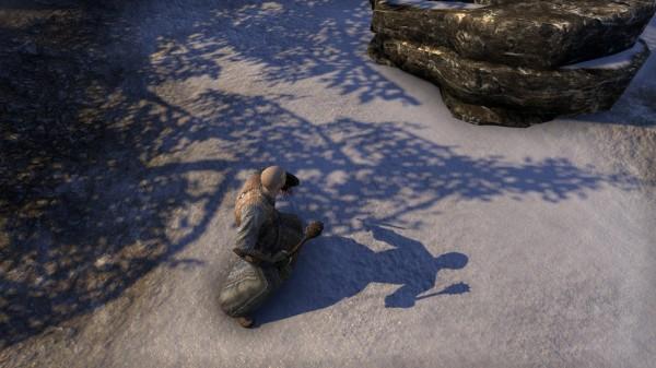 the_Elder_Scrolls_Online_Grafikvergleich_Schatten__4_-pcgh