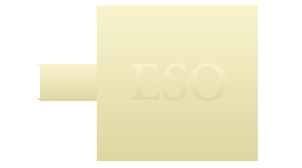 RuESO 6.0
