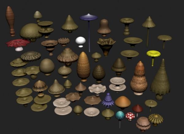 bc_mushroom_03