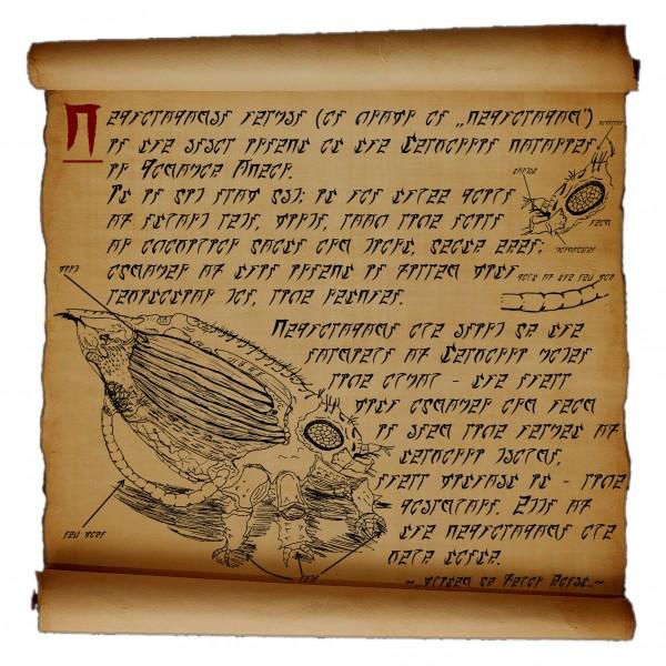 cephalopod_3595961_5028141