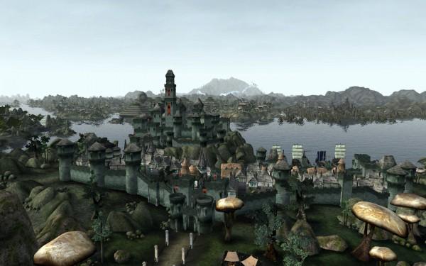 Старый Эбонхарт – один из самых больших и населенных городов Морровинда.