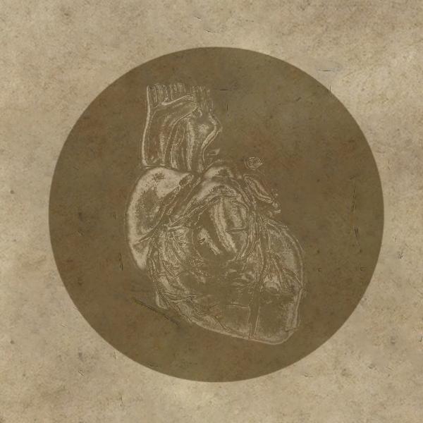 Сердце Лорхана из книги «Лунный Лорхан»