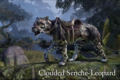 gp_crwn_mounts_cloudedsencheleopard_1x1