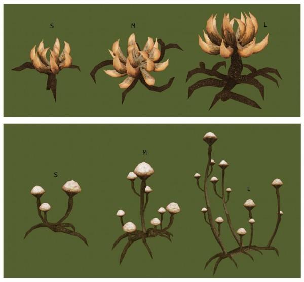 final mushshrubs