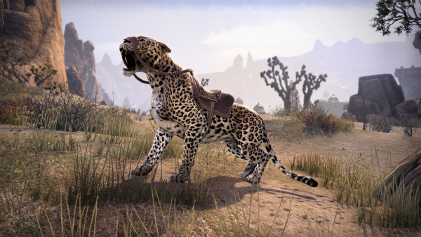 Сенч-леопард2500