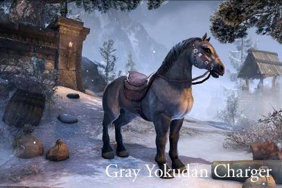 Йокуданский серый скакун
