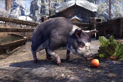 Psijic Domino Pig