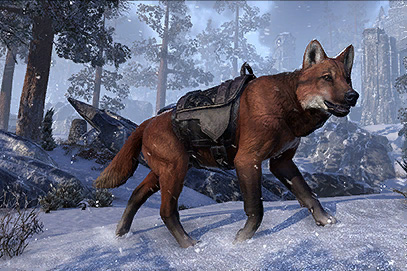 Red Pit Wolf Mount
