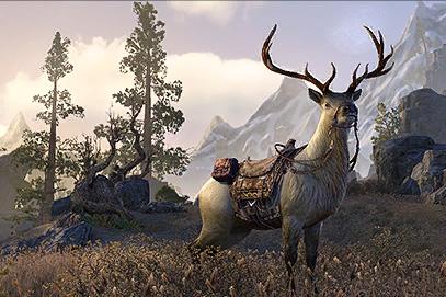 Great Elk Mount