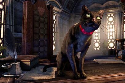 gp_crwn_pets_blackcat_1x1.jpg